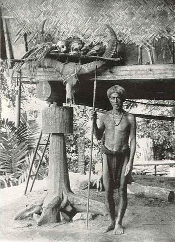 An Ifugao warrior with some of his trophies; I...